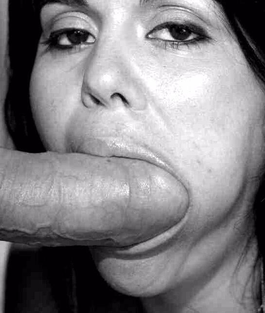 Schwanz Blasen Sexbilder - Kostenlose Sexbilder und heisse Pornobilder - Foto 5893