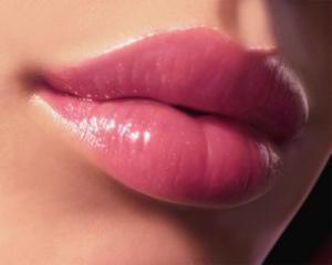 gratis Schwanz Blasen - Kostenlose Sexbilder und heisse Pornobilder - Bild 5631